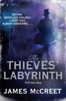 The Thieves' Labyrinth by James McCreet