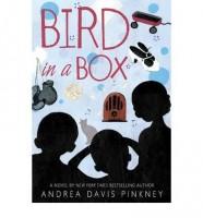 Bird in a Box by Andrea Davis Pinkney