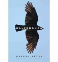 Kaltenburg by Marcel Beyer