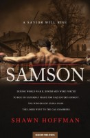 Samson: A Saviour will Rise by Shawn Hoffman