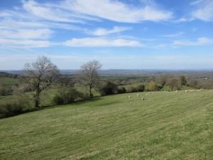 Dogbury Hill (800x600)